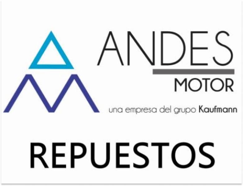 Repuestos Andes Motor